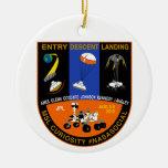 Ornamento del Social de la NASA de Marte Curioisty Ornatos