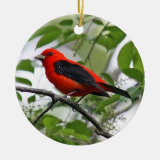 Ornamento del Tanager de escarlata Ornamentos De Navidad
