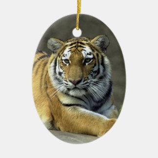 Ornamento del tigre adorno navideño ovalado de cerámica
