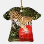 Ornamento del tigre de Bengala Adornos