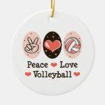 Ornamento del voleibol del amor de la paz ornamento de reyes magos