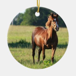 Ornamento derecho del caballo de la castaña ornamente de reyes