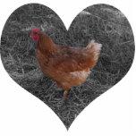 Ornamento en forma de corazón del navidad del poll esculturas fotograficas