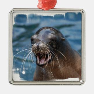 Ornamento enojado del león marino ornato