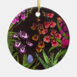 Ornamento equitante de las orquídeas de Oncidium Ornamente De Reyes