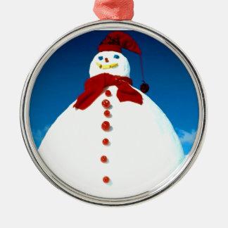 Ornamento escarchado del navidad del invierno adornos