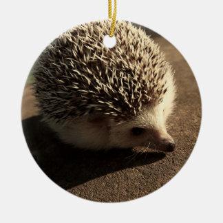 Ornamento estándar del erizo adorno de navidad