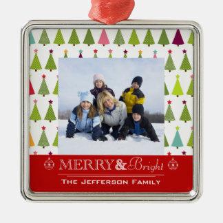 Ornamento feliz y brillante de la foto de familia adornos