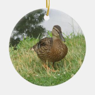 Ornamento femenino del pato del pato silvestre ornamentos de reyes