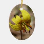 Ornamento floral amarillo del lirio de trucha ornamentos de reyes