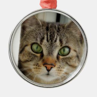 Ornamento gato adorno navideño redondo de metal