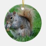 Ornamento gris de la ardilla ornamentos de navidad