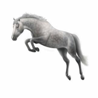 Ornamento gris de salto del día de fiesta del caba escultura fotografica