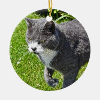 Ornamento gris y blanco del gato adorno redondo de cerámica