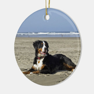 Ornamento hermoso de la foto del perro de montaña adorno de reyes