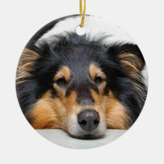 Ornamento hermoso del color de la nariz de perro adorno de reyes