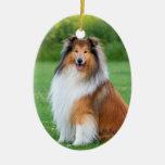 Ornamento hermoso del retrato del perro del collie ornamentos para reyes magos