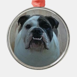 Ornamento inglés del dogo ornato