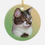 Ornamento inquisitivo de ojos brillantes del gato ornamento para arbol de navidad