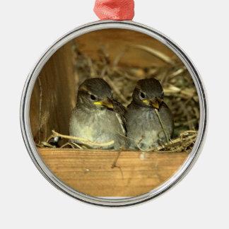 Ornamento jerarquizado de los polluelos adorno navideño redondo de metal