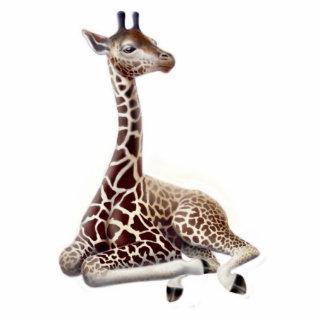 Ornamento joven del día de fiesta de la jirafa adorno fotoescultura