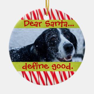 Ornamento lindo de la foto del navidad del mascota adornos de navidad