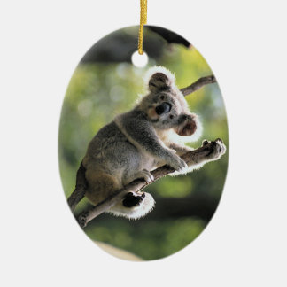 Ornamento lindo de la koala adorno navideño ovalado de cerámica