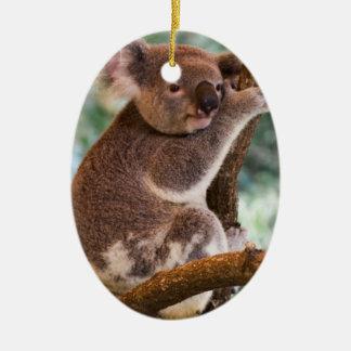 Ornamento lindo de la koala ornaments para arbol de navidad