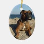 Ornamento lindo del perro del boxeador adornos