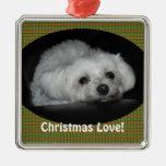 Ornamento maltés de amor adorable del perrito del  ornamentos de reyes