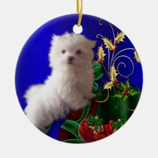 Ornamento maltés del perro de perrito adorno navideño redondo de cerámica