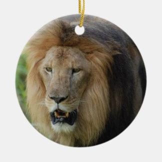 Ornamento orgulloso del león ornamente de reyes