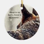 Ornamento perdido del mascota ornato