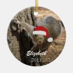 Ornamento personalizado de la ardilla del navidad ornamente de reyes