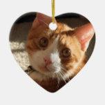 Ornamento personalizado del corazón de la foto del ornamento para arbol de navidad