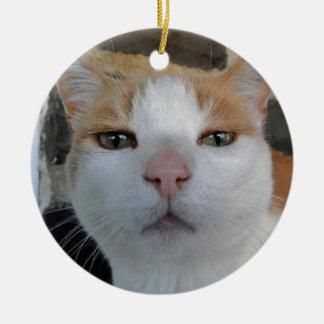 Ornamento principal del tiro del gatito adorno de reyes
