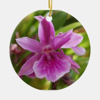 Ornamento púrpura de la orquídea ornamento de reyes magos