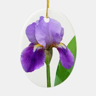 Ornamento púrpura del navidad de la foto del iris ornamente de reyes