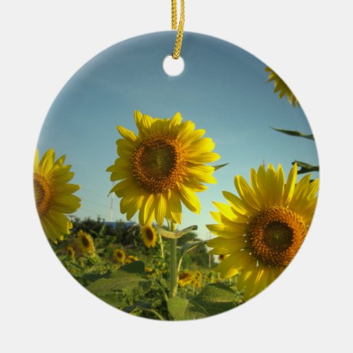 Ornamento que cultiva un huerto orgánico adorno redondo de cerámica