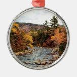 Ornamento rápido del otoño del río adorno redondo plateado