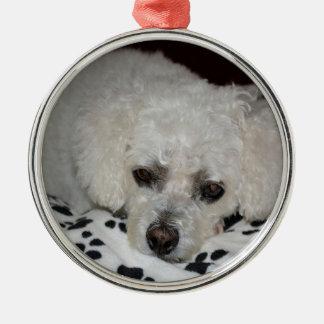 Ornamento redondo superior del perro blanco adornos