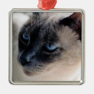 Ornamento reservado del gato siamés ornato
