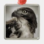 ornamento Rojo-atado del halcón Adorno Navideño Cuadrado De Metal