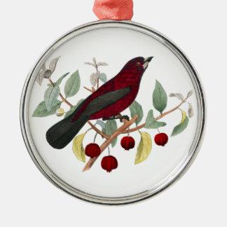 Ornamento rojo del navidad de las bayas del pinzón adorno redondo plateado