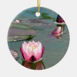 Ornamento rosado bonito de Waterlily Ornamentos De Reyes Magos
