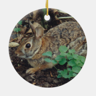 Ornamento salvaje del navidad del conejo de conejo adorno navideño redondo de cerámica