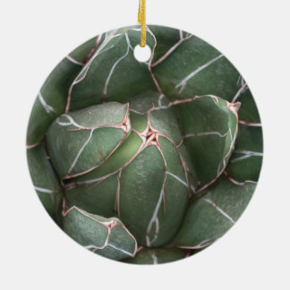 Ornamento suculento verde del círculo adorno navideño redondo de cerámica