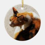 Ornamento tricolor del gato adorno navideño redondo de cerámica