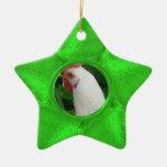 Ornamento verde de la foto de la estrella ornamente de reyes