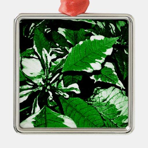 Ornamento verde del Poinsettia Ornamentos Para Reyes Magos
